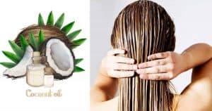 6 cách dưỡng tóc bằng dầu dừa